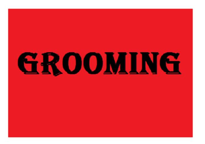 Seksuelle overgrep 1: Grooming